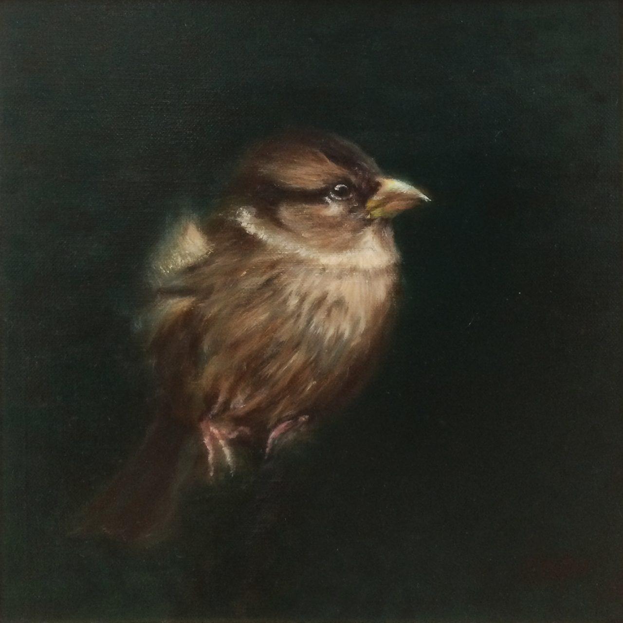 "Sparrow ""Mus"" I - Carré PM, Anna van Oel"